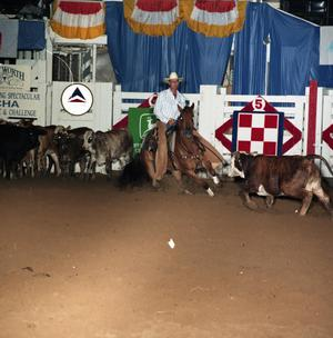 Primary view of object titled 'Cutting Horse Competition: Image 1991_D-231_07'.