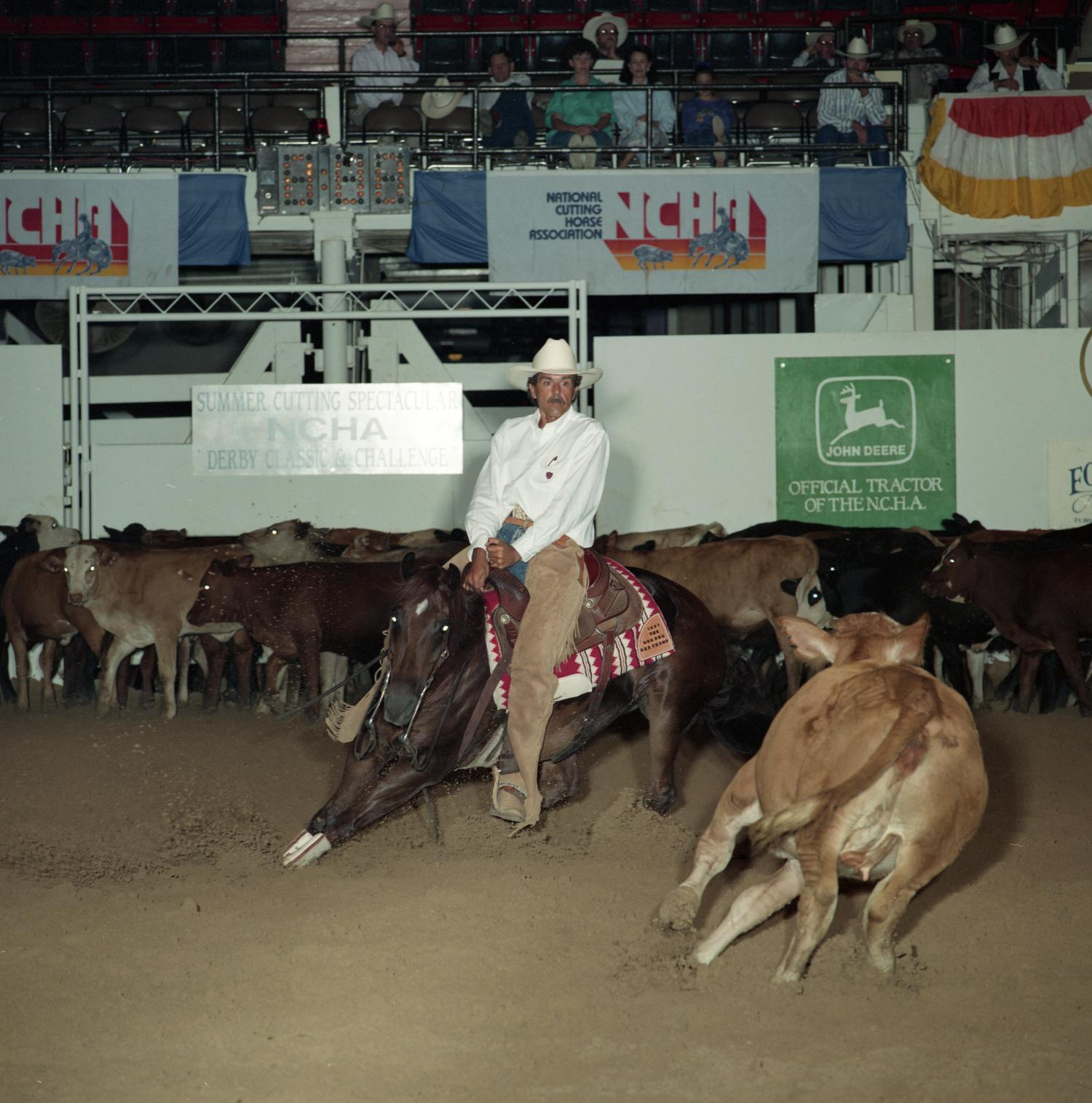 Cutting Horse Competition: Image 1991_D-38_04                                                                                                      [Sequence #]: 1 of 1