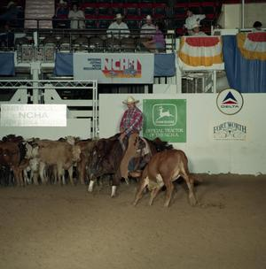 Primary view of object titled 'Cutting Horse Competition: Image 1991_D-44_05'.