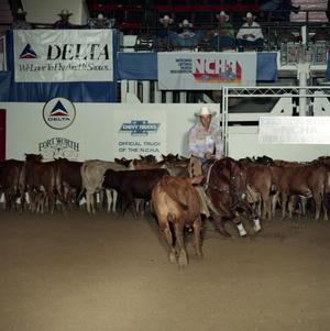 Primary view of object titled 'Cutting Horse Competition: Image 1991_D-45_01'.