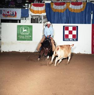 Primary view of object titled 'Cutting Horse Competition: Image 1991_D-48_02'.