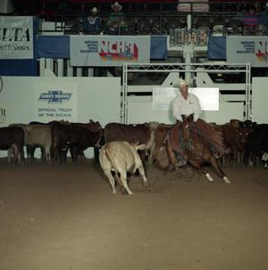 Primary view of object titled 'Cutting Horse Competition: Image 1991_D-51_11'.