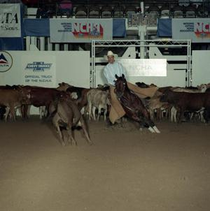 Primary view of object titled 'Cutting Horse Competition: Image 1991_D-53_01'.