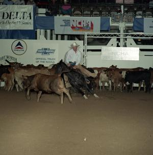 Primary view of object titled 'Cutting Horse Competition: Image 1991_D-53_08'.