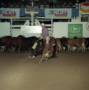 Primary view of object titled 'Cutting Horse Competition: Image 1991_D-56_11'.