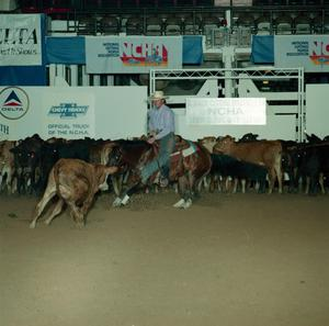 Primary view of object titled 'Cutting Horse Competition: Image 1991_D-58_10'.
