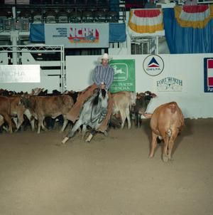 Primary view of object titled 'Cutting Horse Competition: Image 1991_D-59_01'.