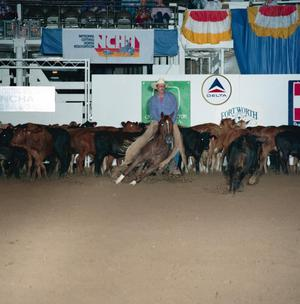 Primary view of object titled 'Cutting Horse Competition: Image 1991_D-63_08'.