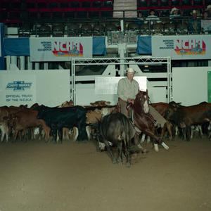 Primary view of object titled 'Cutting Horse Competition: Image 1991_D-67_11'.