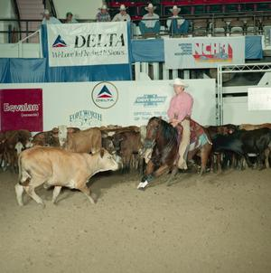 Primary view of object titled 'Cutting Horse Competition: Image 1991_D-71_10'.