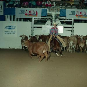 Primary view of object titled 'Cutting Horse Competition: Image 1991_D-79_05'.