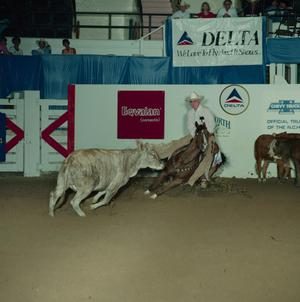 Primary view of object titled 'Cutting Horse Competition: Image 1991_D-84_05'.