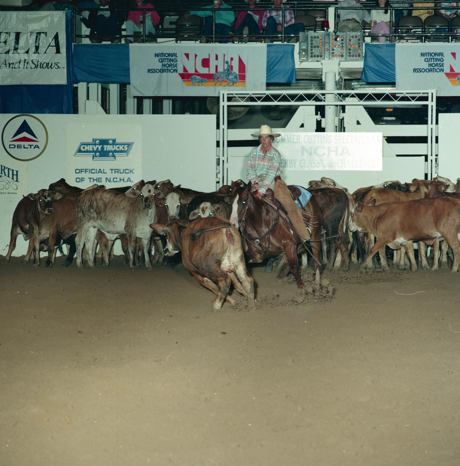 Cutting Horse Competition: Image 1991_D-86_02                                                                                                      [Sequence #]: 1 of 1
