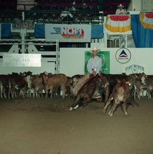 Primary view of object titled 'Cutting Horse Competition: Image 1991_D-95_07'.