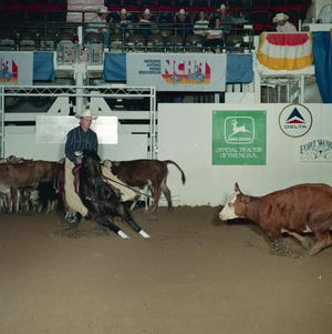 Primary view of object titled 'Cutting Horse Competition: Image 1991_D-96_04'.