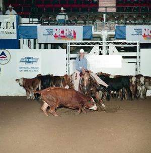 Primary view of object titled 'Cutting Horse Competition: Image 1991_D-99_05'.