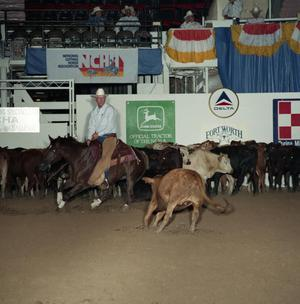 Primary view of object titled 'Cutting Horse Competition: Image 1991_D-41_02'.