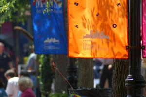 Primary view of [Orange cloth banner]