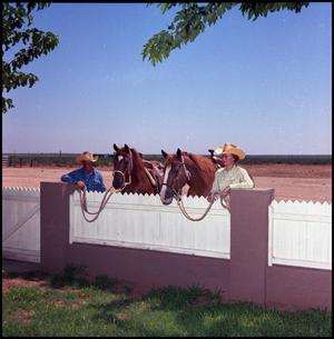 Primary view of object titled '[Man and woman behind a fence with horses]'.