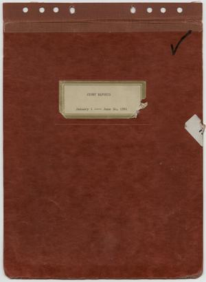 Primary view of object titled '[News Story Log: January 1 to June 30, 1991]'.
