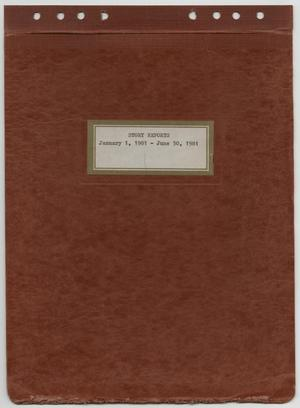 Primary view of object titled '[News Story Log: January 1 to June 30, 1981]'.