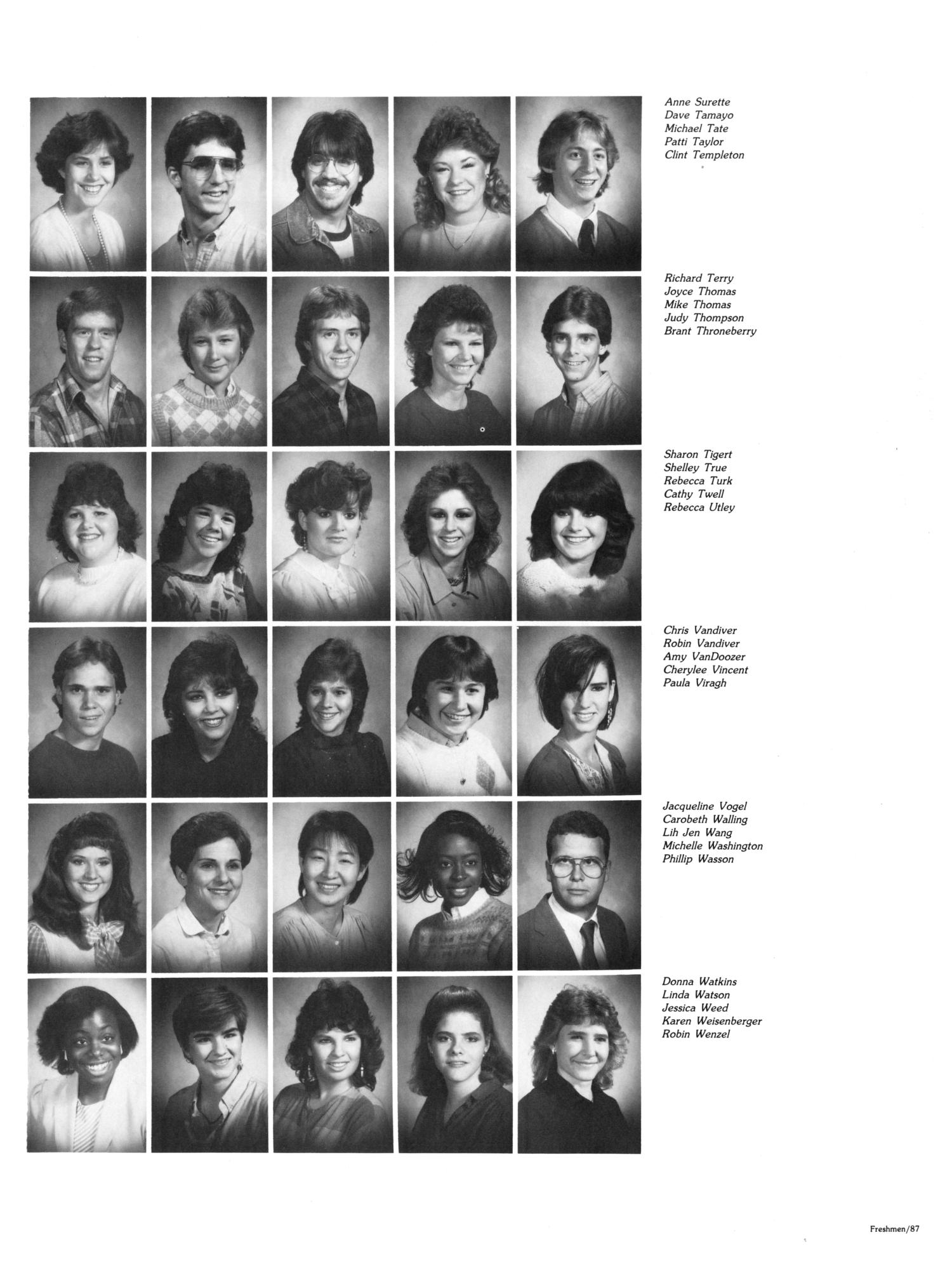 The Aerie, Yearbook of North Texas State University, 1985                                                                                                      87
